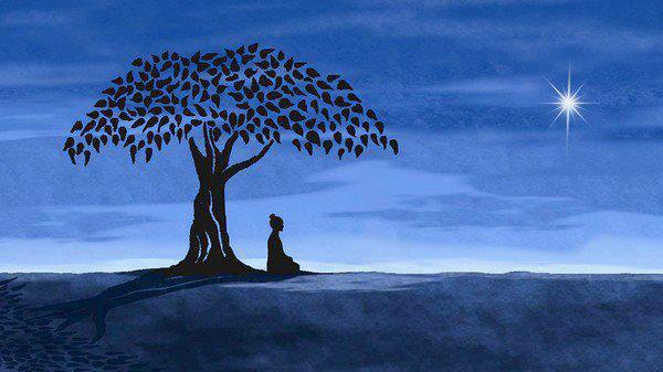 Thoughtful Tree